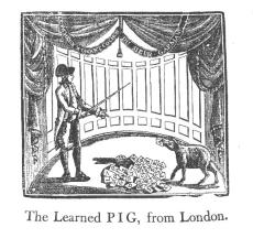 learnedpiglondon