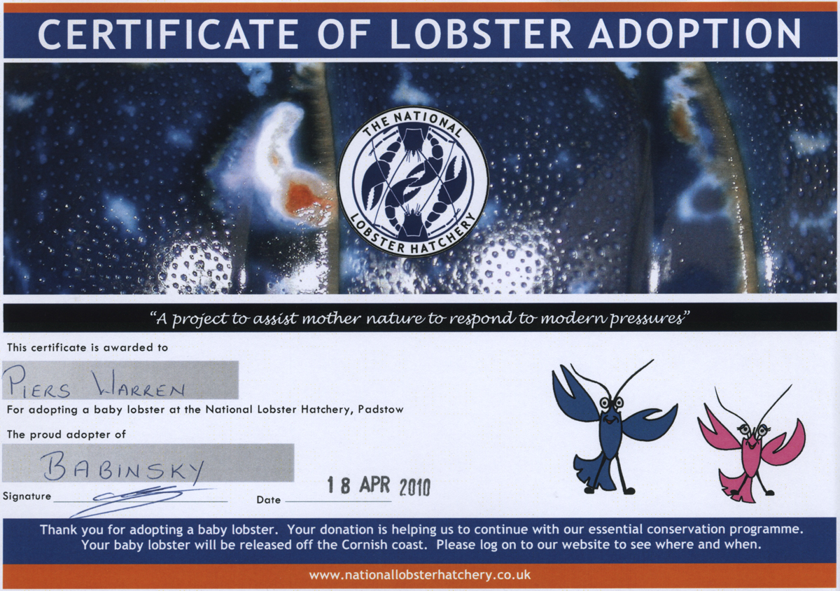 lobster adoption