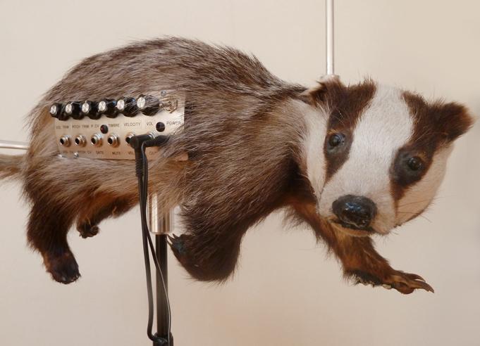 badgermin02