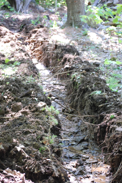 drainage ditch small
