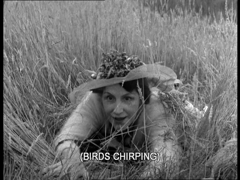 birds_chirping