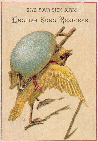 sickbirds